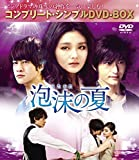 泡沫の夏 (コンプリート・シンプルDVD-BOX廉価版シリーズ)(期間限定生産)