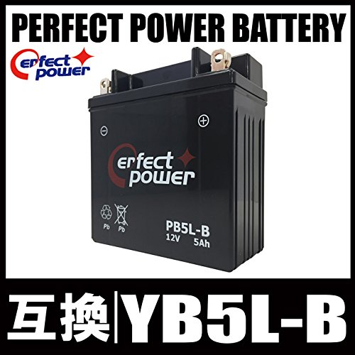 PERFECT POWER PB5L-B 密閉型 MF バイ...
