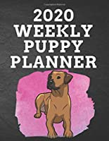 """2020 WEEKLY PUPPY PLANNER: 8.5""""x 11"""" 115 Page Rhodesian Ridgeback Dog Lover Gift with Pink on Black Back Academic Year At A Glance Planner Calendar With To-Do List and Organizer And Vertical Dated Pages Brown Doggo on Splash of Pink. (Rhodesian Ridgeback 2020 Planners)"""