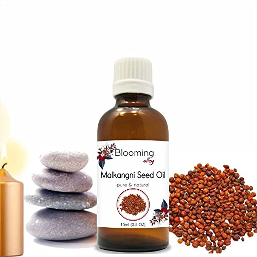 バリケード形式大Malkangani Seed Oil (Celastrus Paniculatus) 15 ml or .50 Fl Oz by Blooming Alley