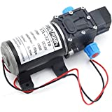 100W 12V 160PSI Pressure Water Pump Caravan Camping Boat 8L/Min Self-Priming