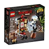 LEGO Ninjago Spinjitzu Training スピンジッツトレーニング 70606 Building Kit (109 Piece) 並行輸入品