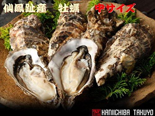 北海道仙鳳趾産・殻付牡蠣【中】×30個