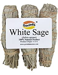 Govinda - Pack of 3 Mini White Sage Smudge Stick, 10cm Long