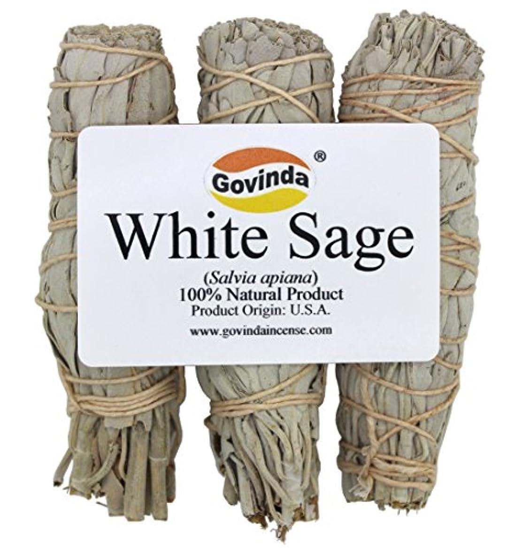 Govinda - Pack of 3 Mini White Sage Smudge Stick, 10cm Long