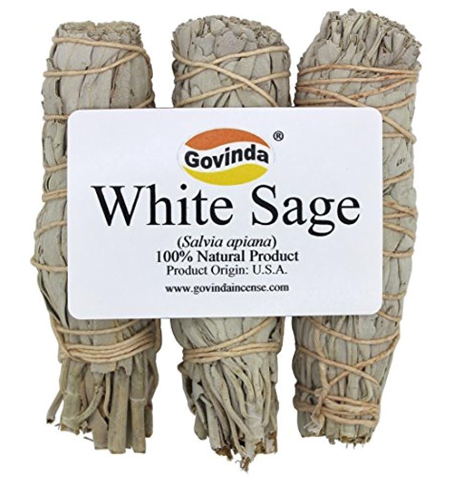 情緒的ストレージしかしながらGovinda - Pack of 3 Mini White Sage Smudge Stick, 10cm Long