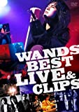 WANDS BEST LIVE & CLIPS [DVD]