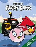 Meu Kit Angry Birds