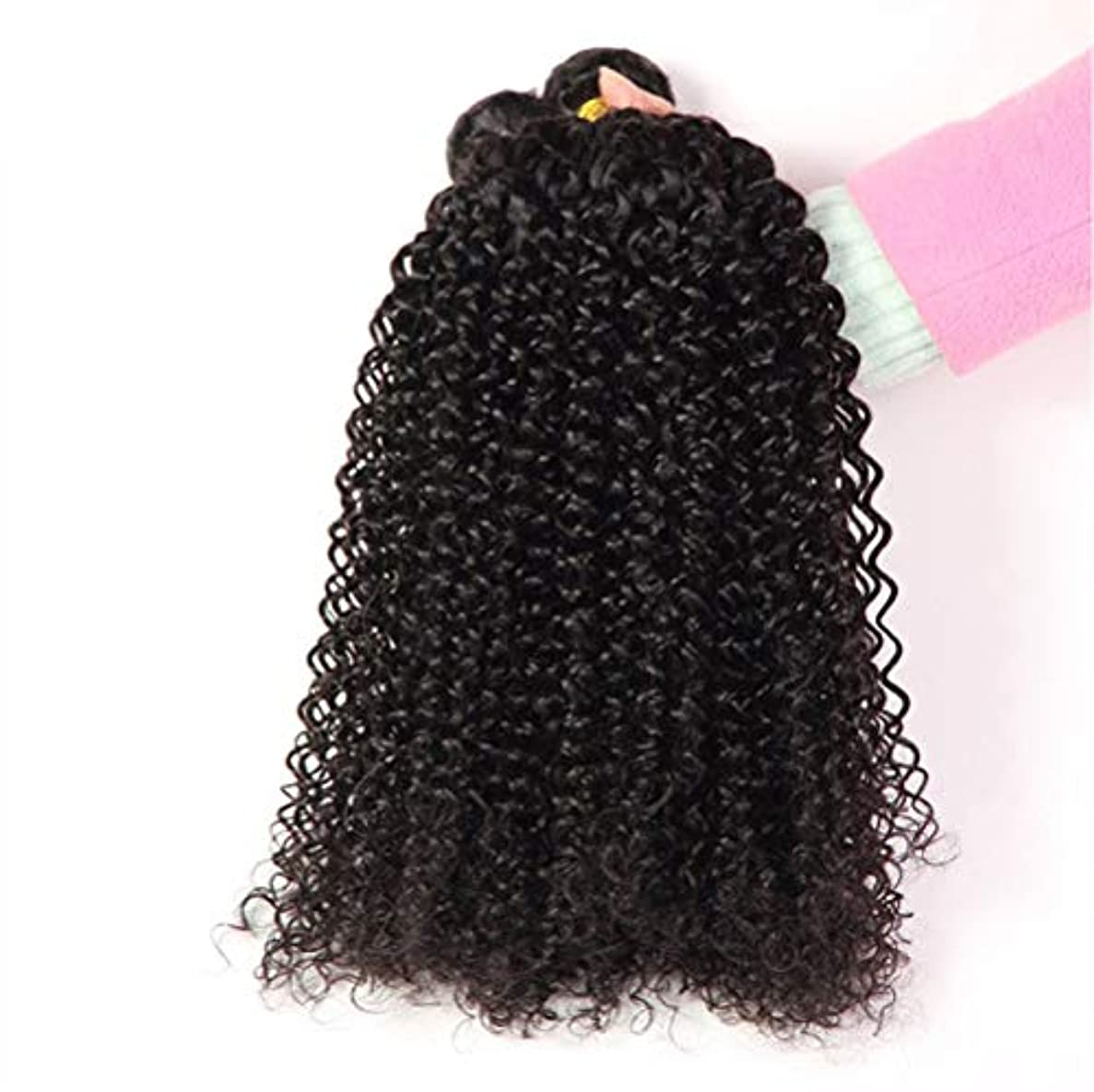 欠陥蒸発あいまいさ女性130%密度髪織りブラジルディープウェーブ1バンドルRemyブラジルディープウェーブ