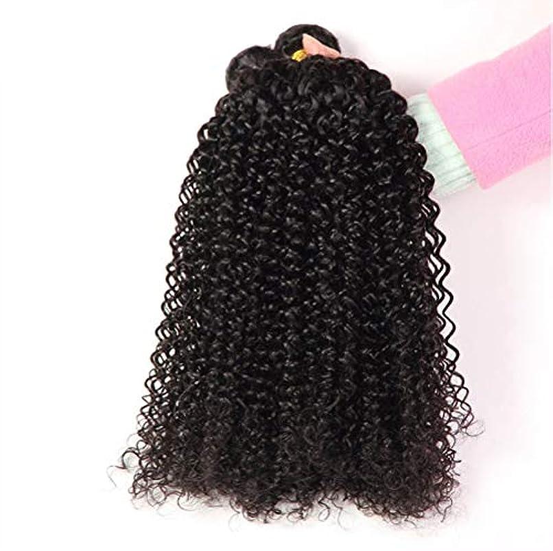 傷跡シエスタオーガニック女性130%密度髪織りブラジルディープウェーブ1バンドルRemyブラジルディープウェーブ