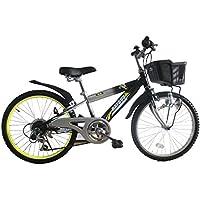 RAYSUSレイサス 自転車 22インチ RY-226KD-H キッズバイク シマノ6段ギア ダイナモライト 後輪鍵 90%完成車