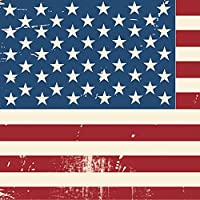 ポスター ウォールステッカー 正方形 シール式ステッカー 飾り 30×30cm Ssize 壁 インテリア おしゃれ 剥がせる wall sticker poster アメリカ 外国 国旗 011606