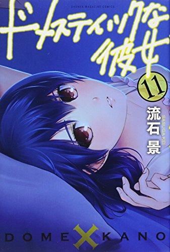 ドメスティックな彼女(11) (講談社コミックス)の詳細を見る