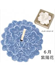カメヤマキャンドル( kameyama candle ) 花づくし(植物性) 紫陽花 「 紫陽花(6月) 」 キャンドル