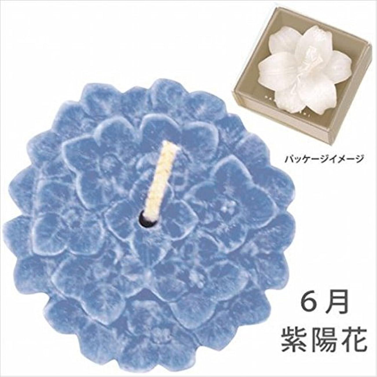 滴下マッシュ必要ないカメヤマキャンドル( kameyama candle ) 花づくし(植物性) 紫陽花 「 紫陽花(6月) 」 キャンドル