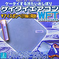冷却抗菌消臭 (ノネナール対応) ひんやり グッズ 冷却剤 ケイタイエアコン WFT ウエット フェイスタオル +123(100ml) セット
