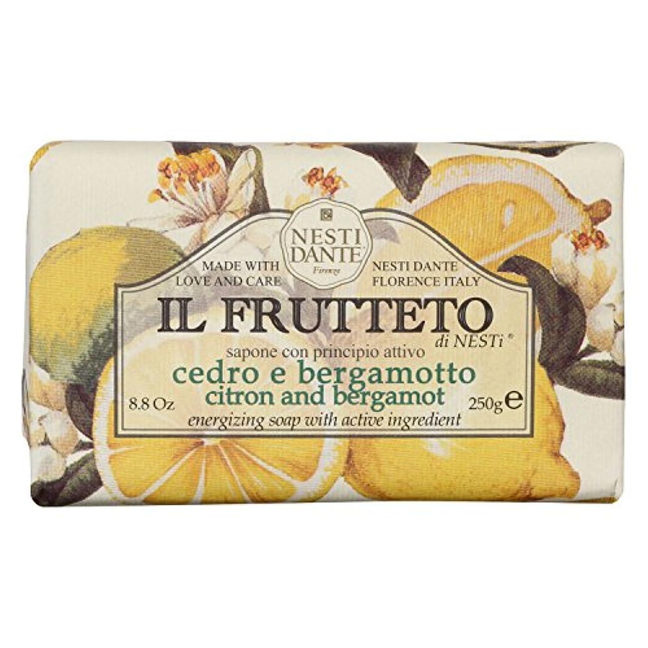 前部性別白菜Nesti Dante ネスティダンテ フルッテートソープ シトロン&ベルガモット 250g