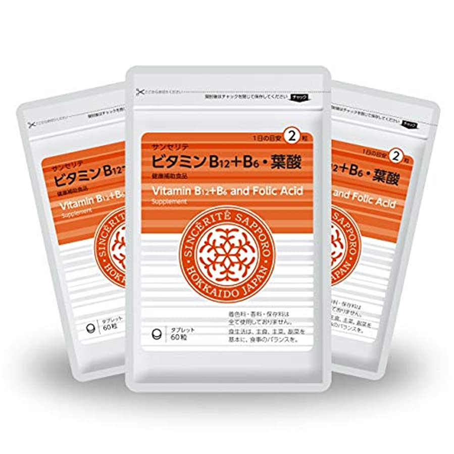 選択区別するスケッチビタミンB12+B6?葉酸 3袋セット[送料無料][ビタミンB12]たっぷり1000μg配合 [国内製造]お得な90日分