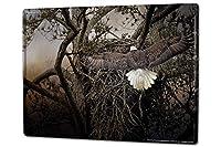 白い桜雑貨屋 ブリキ 看板 レトロ 看板 販売 鳥類のワシの巣 [20x30cm] おしゃれ 雑貨 通販 アメリカン ブリキ墙壁、壁挂装饰バー、寝室、ダイニングルーム