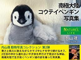 [内山 晟]の南極大陸 コウテイペンギン写真集 NATURE's LIFE