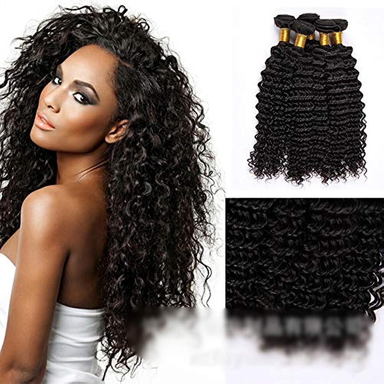 流出薬を飲む公HOHYLLYA ブラジルの深い巻き毛の束100%未処理の人間の髪の毛の織り方自然な黒色の髪の拡張子(1バンドル、10