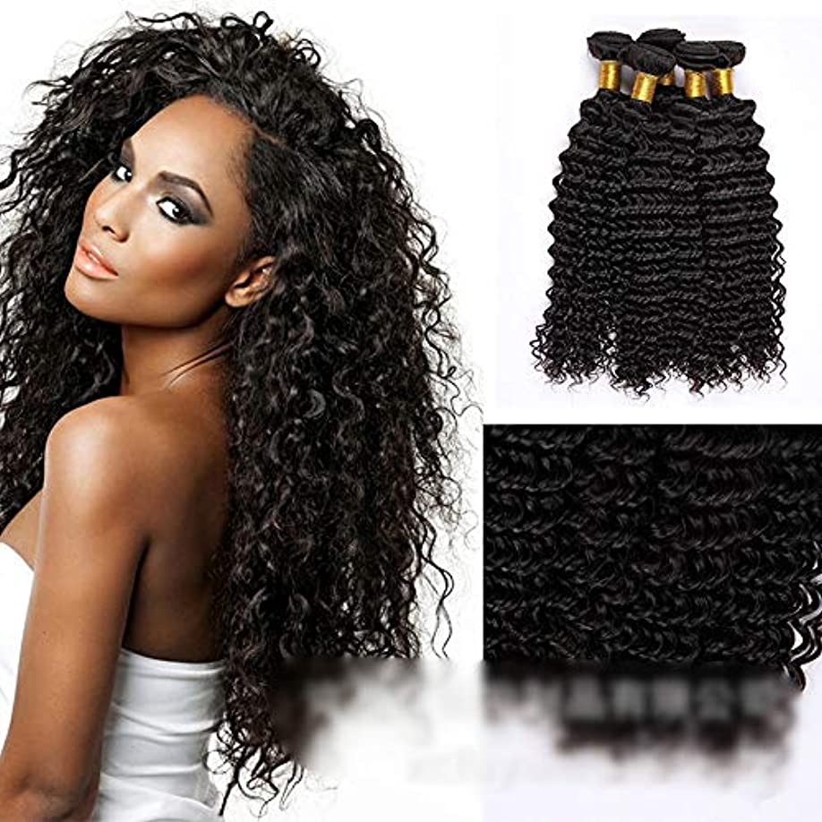 パンフレット本質的ではないサスティーンHOHYLLYA ブラジルの深い巻き毛の束100%未処理の人間の髪の毛の織り方自然な黒色の髪の拡張子(1バンドル、10
