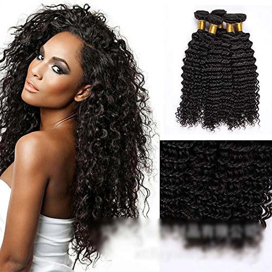 批判ベーリング海峡石灰岩HOHYLLYA ブラジルの深い巻き毛の束100%未処理の人間の髪の毛の織り方自然な黒色の髪の拡張子(1バンドル、10