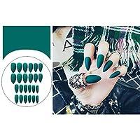 ACHICOO ネイルアートマット 24個 ヒントフォーム マニキュア アート 偽 爪先 ファッション サロン F92マット