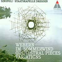 Orchestral Works by Webern