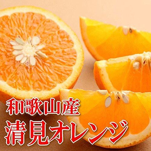 【贈答用 化生箱入り】 和歌山県産 ジューシー清見オレンジ 5kg