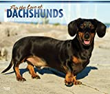 For the Love of Dachshunds 2018 Calendar