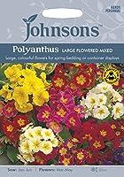 【輸入種子】 Johnsons Seeds Polyanthus LARGE FLOWERED MIXED ポリアンサス・ラージ・フラワー・ミックス ジョンソンズシード
