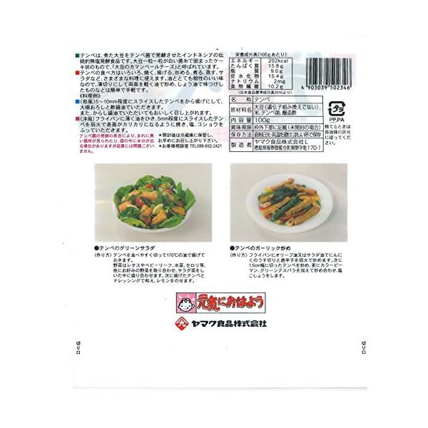 ヤマク食品 テンペ100g×10袋の紹介画像5