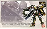 【イベント限定】RG 1/144 ガンダムアストレイ ゴールドフレーム天ミナ [スペシャルコーティング] (機動戦士ガンダムSEED VS ASTRAY)