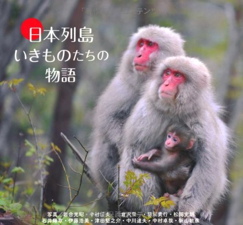 日本列島  いきものたちの物語の詳細を見る