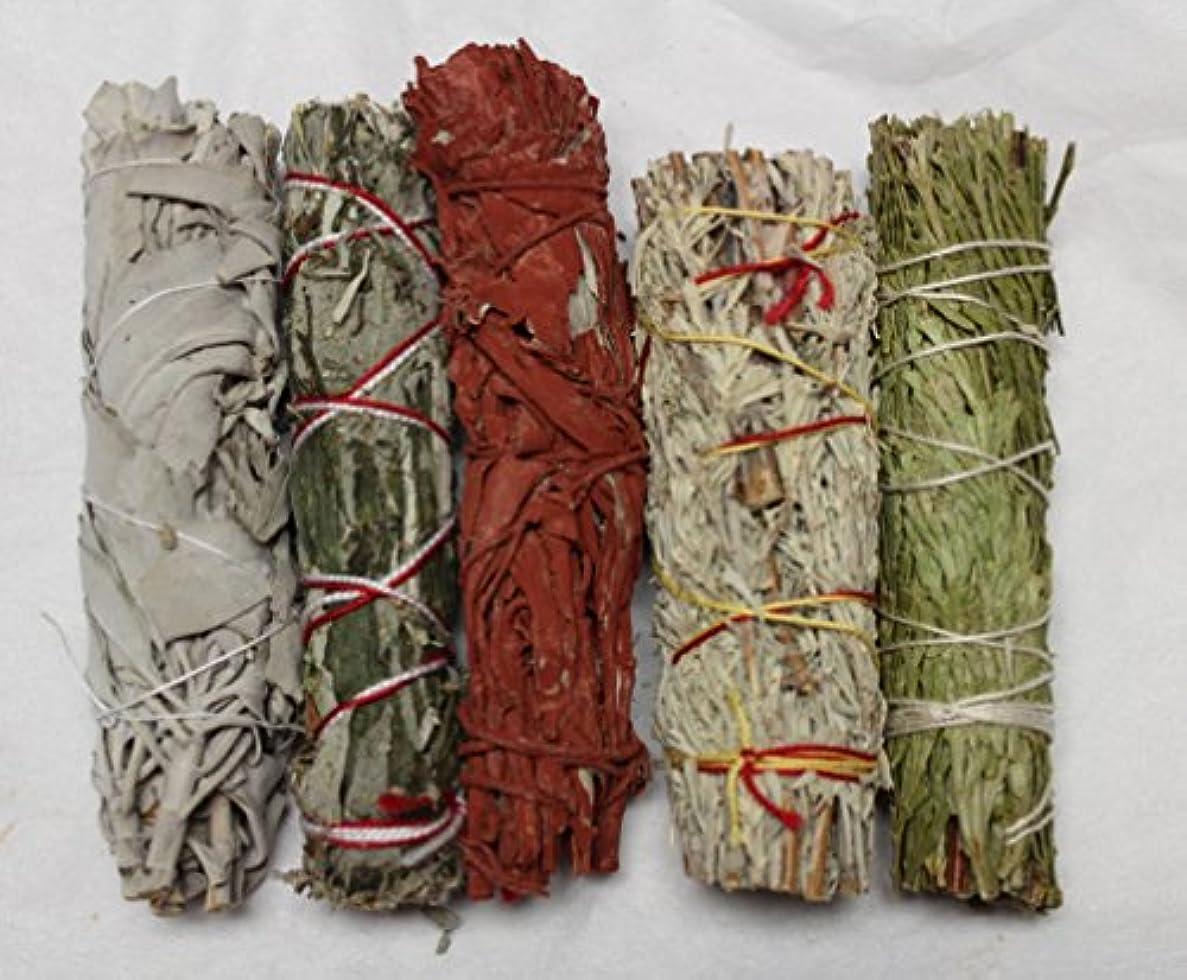 系譜給料十代の若者たちセットof 5セージSmudge Stickサンプラー:ホワイトブラックブルーCedar Dragons Blood