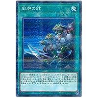 【シングルカード】SR05)同胞の絆/魔法/ノーマル(パラレル)/SR05-JP030