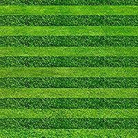 ターフの種子ゴルフサッカーフィールド特級エバーグリーンの芝生の種200pcsの高グレードや種子