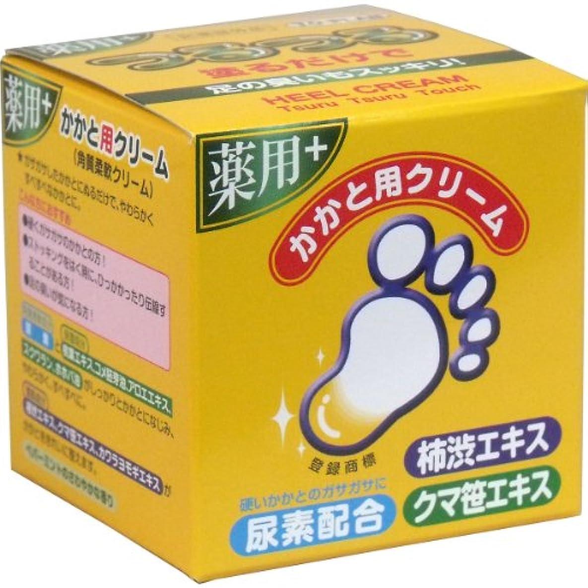 オリエントサラミ虚栄心TO-PLAN(トプラン) 薬用かかと用クリーム 110g