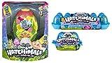 Hatchimals Secret Scene Playset Bundle with Season 2 CollEGGtibles 12-Pack Egg Carton and Citrus Coast 2-Pack Egg Carton