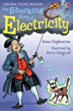 The Shocking Story Of Electricity (3.2 Young Reading Series Two (Blue))