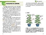 植物学「超」入門 キーワードから学ぶ不思議なパワーと魅力 (サイエンス・アイ新書) 画像