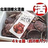 北海道 直送 (ホタテ ほたて 帆立) 【活 殻付き】 4キロ 約35枚 噴火湾産