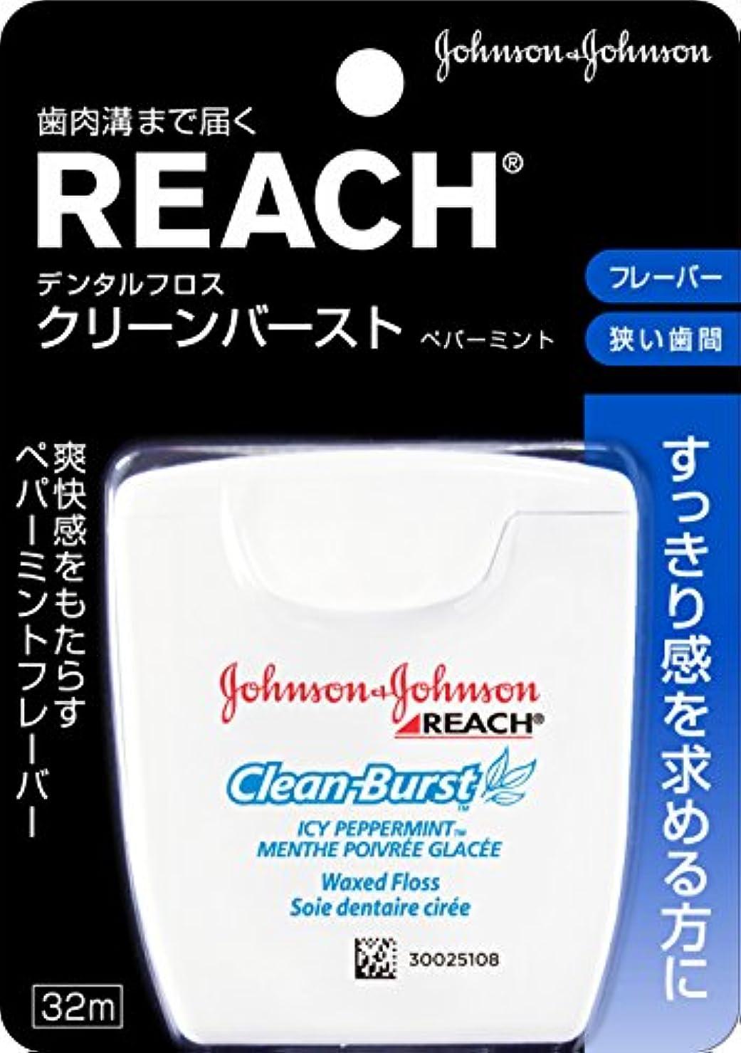 例かび臭い辞任REACH(リーチ) デンタルフロス クリ-ンバ-スト ペパーミント 32m
