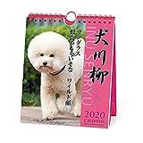 アートプリントジャパン 2020年 プードル川柳(週めくり)カレンダー vol.011 1000109220
