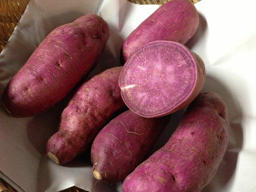 鹿児島県産 西山さんちの酵素紫芋(パープルスイートロード)5kg
