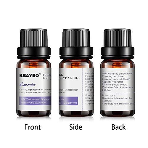 K KBAYBO Essential Oil for Diffuser, Aromatherapy Oil Set, 6 Kinds Fragrance of Lavender, Tea Tree, Rosemary, Lemongrass, Orange,Peppermint