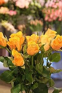 箱買い 一級品のバラ(オレンジ系) 誕生日・記念日・卒業・送別・各種お祝い