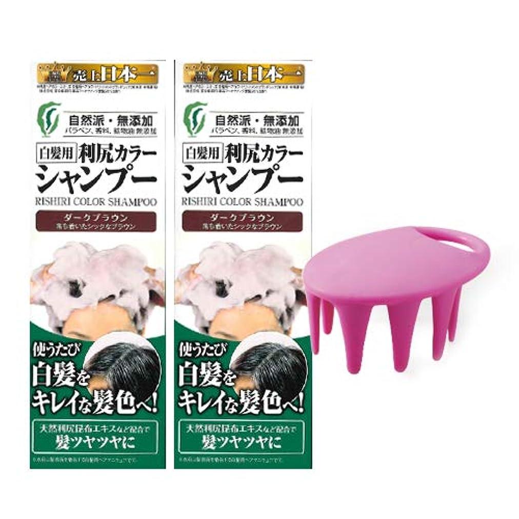 蜂ウサギカリング利尻カラーシャンプー2本(ダークブラウン)&シャンプーブラシ付セット