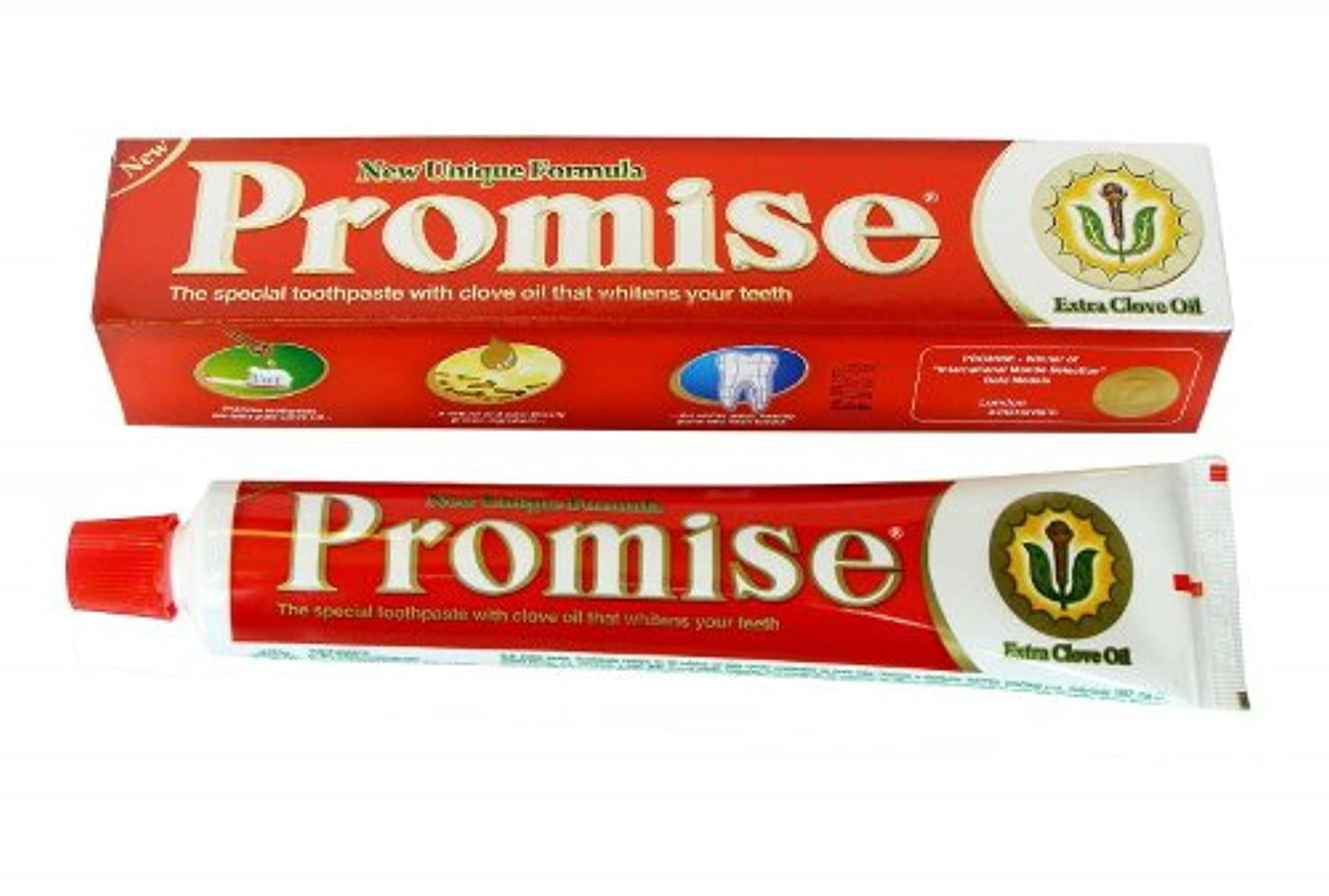 Dabur Promise チョコレートオイル入り練り歯磨き 150g 2個 [並行輸入品]